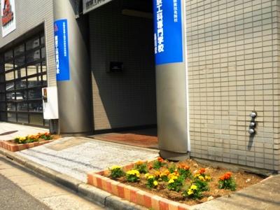 写真 花壇(400).jpg
